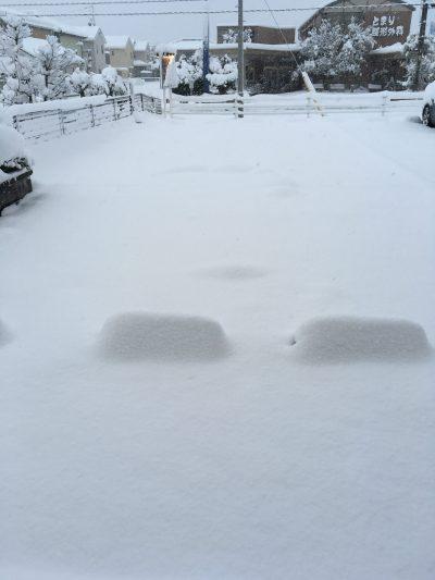 雪2 画像